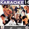 タイポップス/カラオケ対応LD/home karaoke 14
